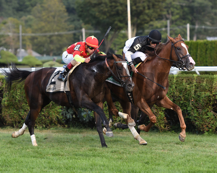 Voodoo Song wins the 2017 Saranac<br /> Coglianese Photos/Annette Jasko