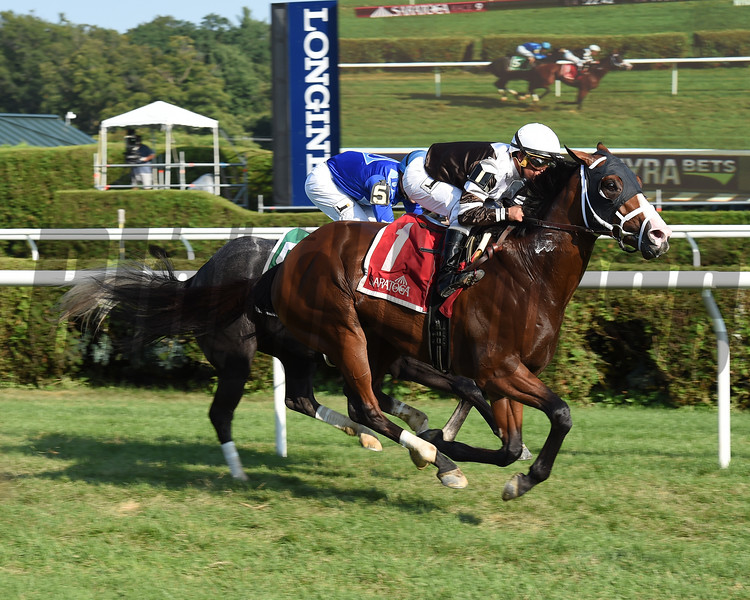 Blind Ambition wins the 2017 Quick Call Stakes<br /> Coglianese Photos