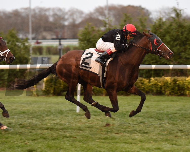 Fire Away wins the 2017 Artie Schiller Stakes<br /> Coglianese Photos