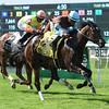 Lady Joan wins the 2017 New York Stallion Stakes<br /> Coglianese Photos