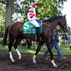 Songbird Mike Smith Delaware Handicap Chad B. Harmon