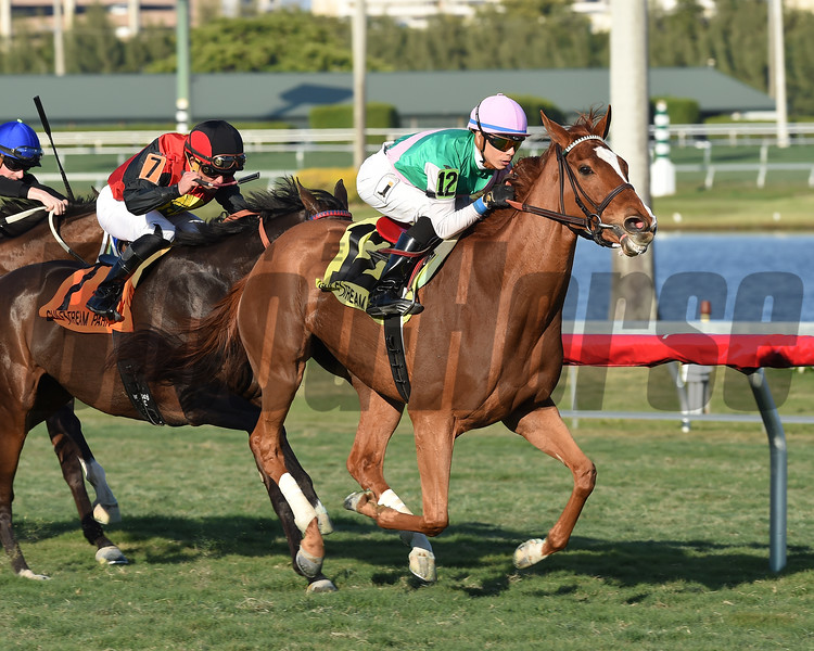 Suffused wins the 2017 La Prevoyante<br /> Coglianese Photos
