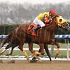 Aqua Bel Sar wins the 2017 New York Stallion Series Stakes