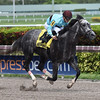 Bird Song wins the 2017 Fred W. Hooper Stakes<br /> Coglianese Photos