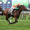 Rubilinda wins the 2017 Pebbles Stakes<br /> Coglianese Photos