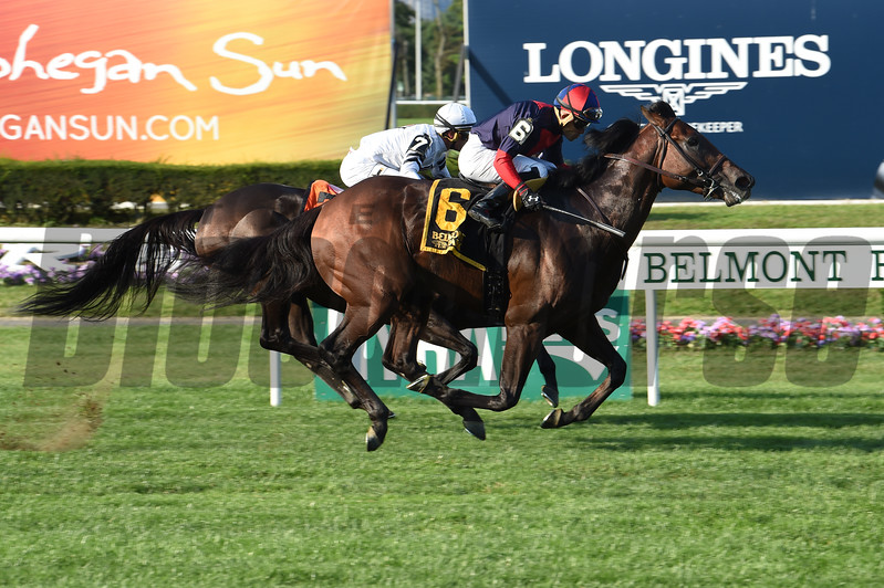 White Flag wins the 2017 Allied Forces<br /> Coglianese Photos/Joe Labozzetta