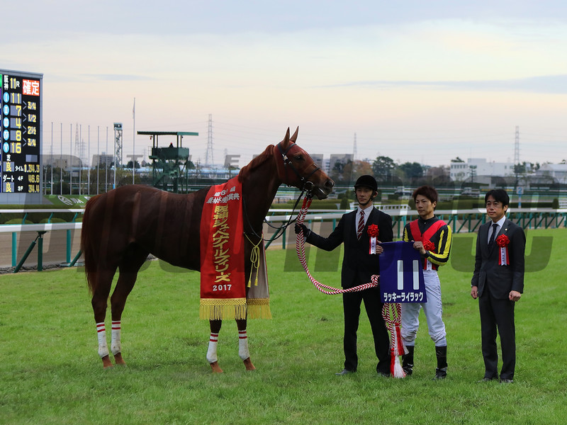 HANSHIN JUVENILE FILLIES  [G1] <br /> <br /> Winner:11.Lucky Lilac (JPN)<br />  <br /> Photo.1/2017 Juvenile Fillies-BH1<br /> <br /> Photo.2/2017 Juvenile  Fillies-<br /> <br /> Distance:1600m,Turf/about 8 furlongs<br /> <br /> Racecourse:Hanshin Racecourse<br /> <br /> Qualification to Run:2yo Fillies<br />  <br /> Weight:2yo 54Kg<br />  <br /> Total Value:JPY 140,200,000 (about US$ 1,219,000)<br /> <br /> Prize Money for the Winner:JPY 65,000,000 (about US$ 565,000)<br /> <br /> Course Condition:Turf Firm ,Fine<br /> <br /> 1st-11.Lucky Lilac (JPN) 1:34.3<br /> <br /> 2nd-7.Lily Loble(JPN) 3/4<br /> <br /> 3rd-4. Mau Lea(JPN) 1/2<br /> <br /> 4th-8. Tosen Bless(JPN) 2 1/2