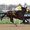 Control Group wins the 2017 Discovery<br /> Coglianese Photos