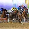 Dubai World Cup  3/25/17, photo by Mathea Kelley/Dubai Racing Club Mindyourbiscuits, Joel Rosario up, win the Dubai Golden Shaheen  Gun Runner after race