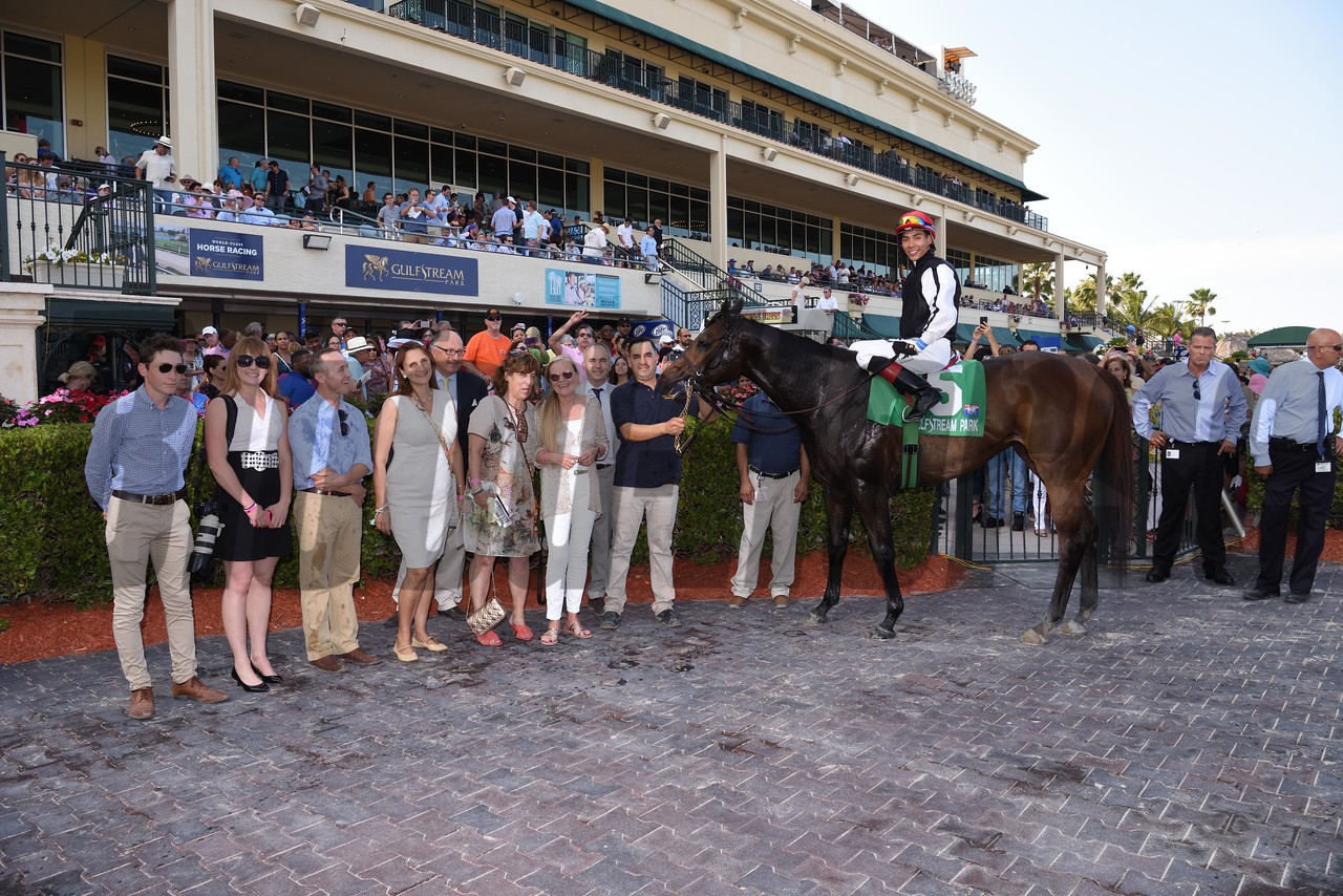 Celestine wins the Honey Fox Stakes (G2T) at Gulfstream Park on April 1, 2017