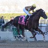 Irish War Cry wins the 2017 Wood Memorial<br /> Coglianese Photos