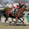 Send It In wins the 2017 Excelsior Stakes<br /> Coglianese Photos