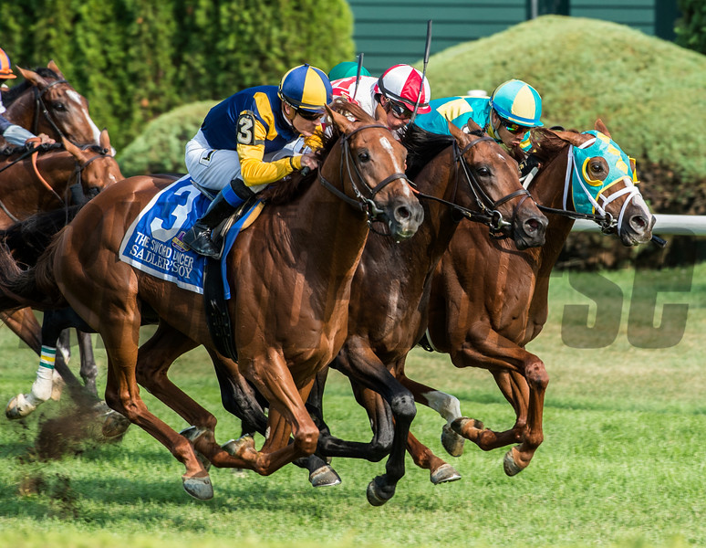 Sadler's Joy with jockey Julien Leparoux comes up on the outside to win the 43rd running of The Sword Dance at the Saratoga Race Course in Saratoga Springs, N.Y.  (Skip Dickstein