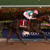 Arrogate wins the 2017 Pegasus World Cup at Gulfstream Park with Mike Smith up for trainer Bob Baffert and owner Juddmonte Farms, 2017 Pegasus World Cup<br /> PhotosbyZ