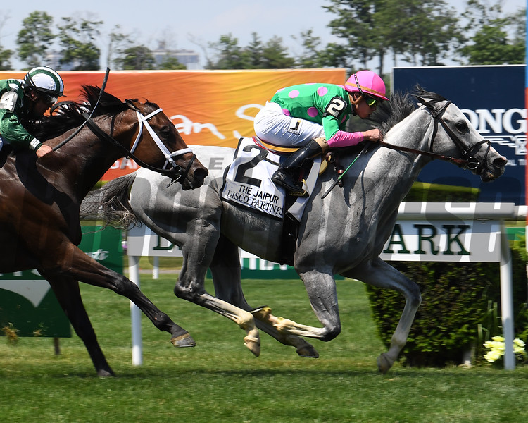 Disco Partner wins the 2017 Jaipur<br /> Coglianese Photos/Viola Jasko