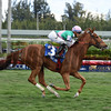 Suffused wins the 2017 The Very One Stakes<br /> Coglianese Photos/Leslie Martin