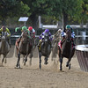 Diversify wins the 2017 Jockey Club Gold Cup<br /> Coglianese Photos