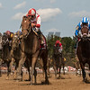 Practical Joke with jockey Joel Rosario wins the 33rd running of The H. Allen Jerkens at the Saratoga Race Course in Saratoga Springs, N.Y.  (Skip Dickstein)