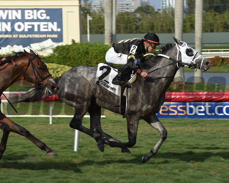 Susie Bee wins $75,000 the Christmas Past Stakes at Gulfstream Park on May 27 2017<br /> Coglianese Photos/Leslie Martin
