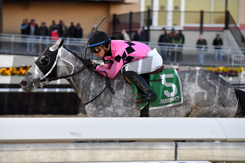 Actress wins the 2017 Comely<br /> Coglianese Photos/Joe Labozzetta