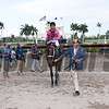 Salty wins the Gulfstream Park Oaks (G2) at Gulfstream Park on April 1, 2017