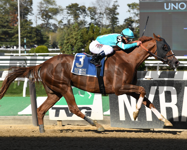 Twisted Tom wins the 2017 Empire Classic<br /> Coglianese Photos/Viola Jasko