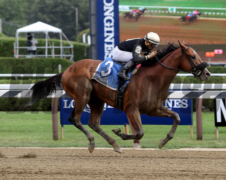 Aveenu Malcainu wins the 2017 Funny Cide Stakes<br /> Coglianese Photos/Taylor Ejdys