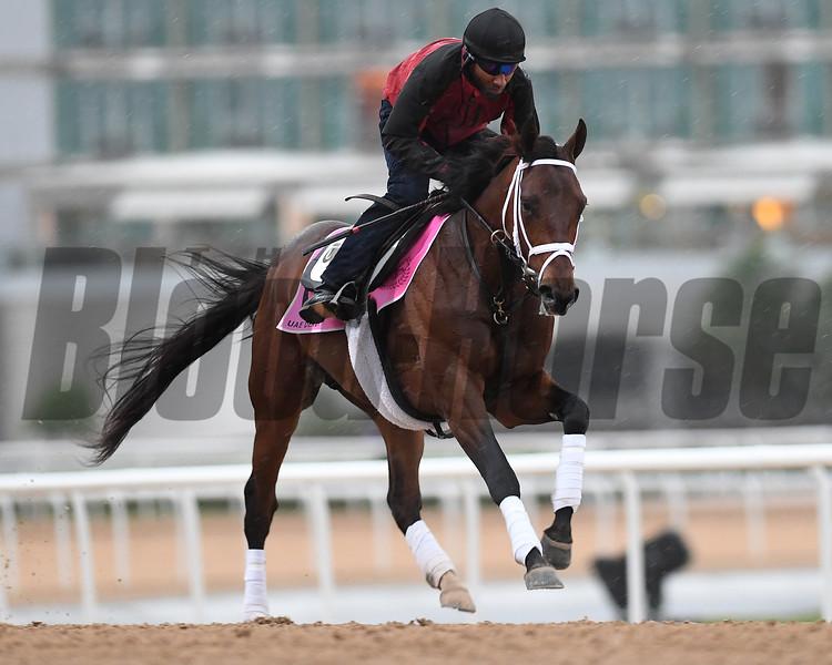 Dubai World Cup -Morning works 3/24/17, photo by Mathea Kelley/Dubai Racing Club<br /> Master Plan, UAE Derby