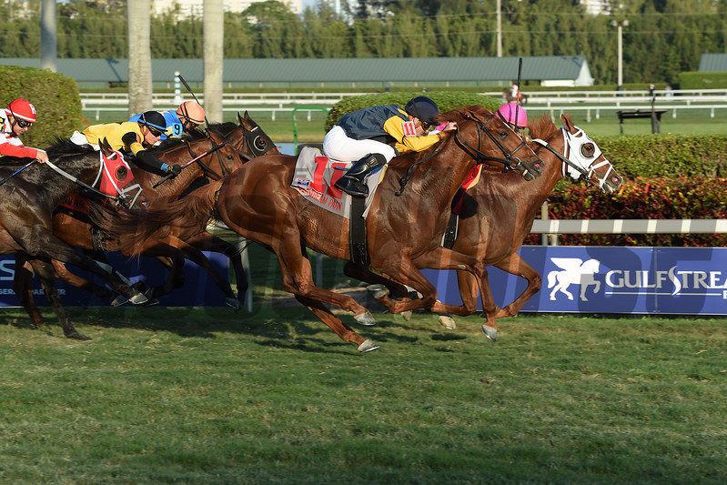 Taghleeb wins the 2017 W. L. McKnight Handicap<br /> Coglianese Photos/Leslie Martin
