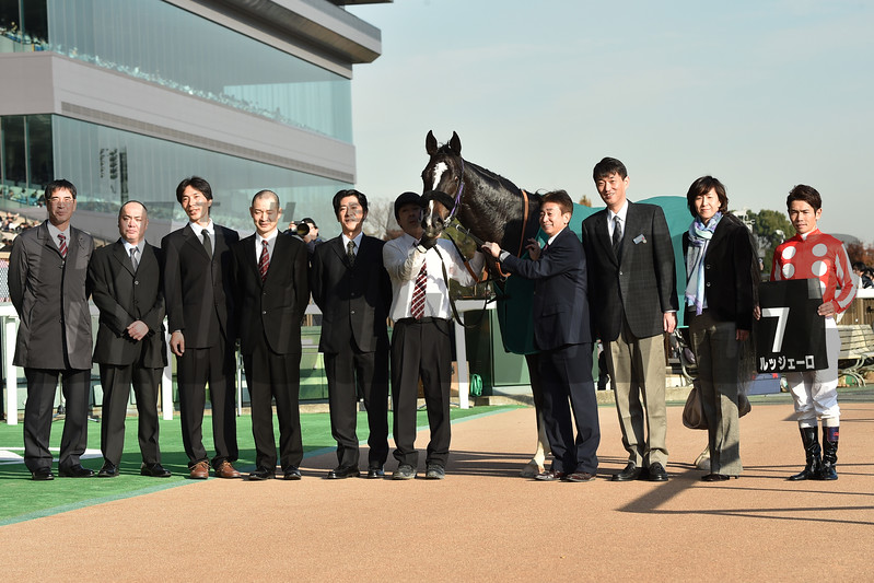 Ruggero wins the 2017 Cattleya Sho  <br /> Katsumi Saito
