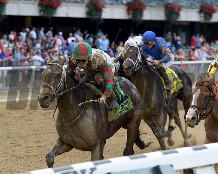 Firenze Fire wins the 2017 Champagne Stakes<br /> Coglianese Photos/Chelsea Durand