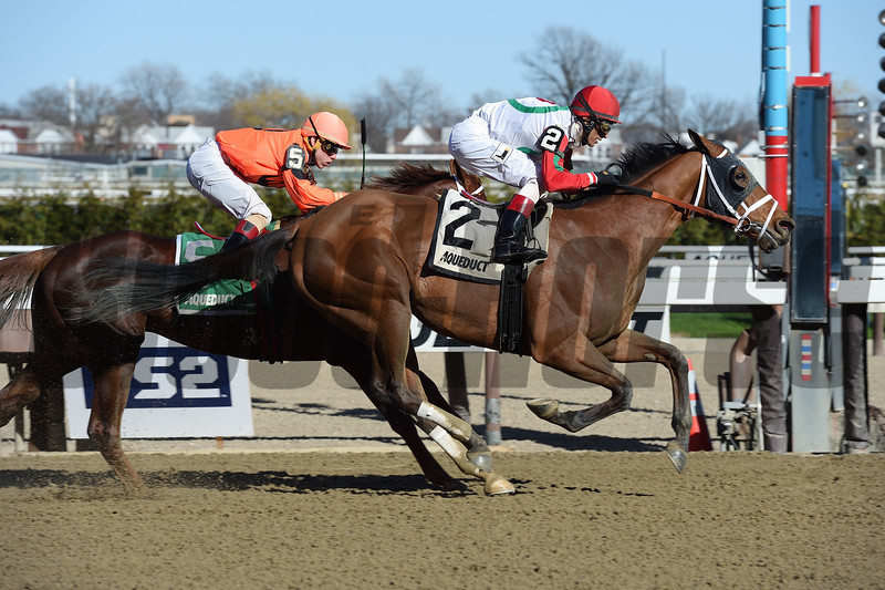 Send It In wins the 2017 Excelsior Stakes<br /> Coglianese Photos/Susie Raisher