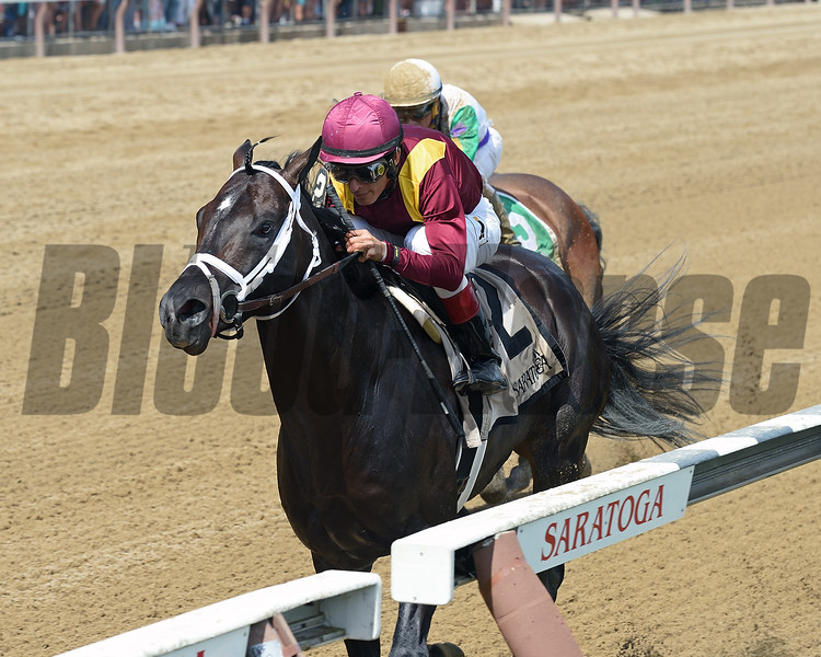 Coal Front wins the 2017 Amsterdam<br /> Coglianese Photos/Chelsea Durand