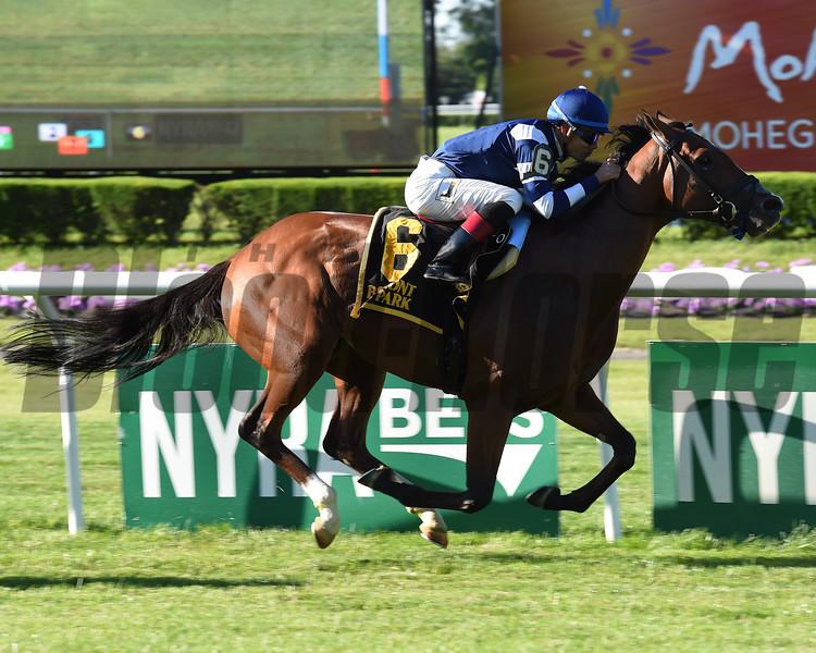 Oscar Performance wins the 2017 Pennine Ridge Stakes<br /> Coglianese Photos