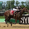 He Hate Me wins the 2017 Tremont<br /> Coglianese Photos/Brittlan Wall