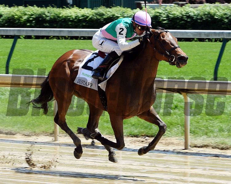 Paulassilverlining wins the 2017 Humana Distaff<br /> Dave Harmon Photo