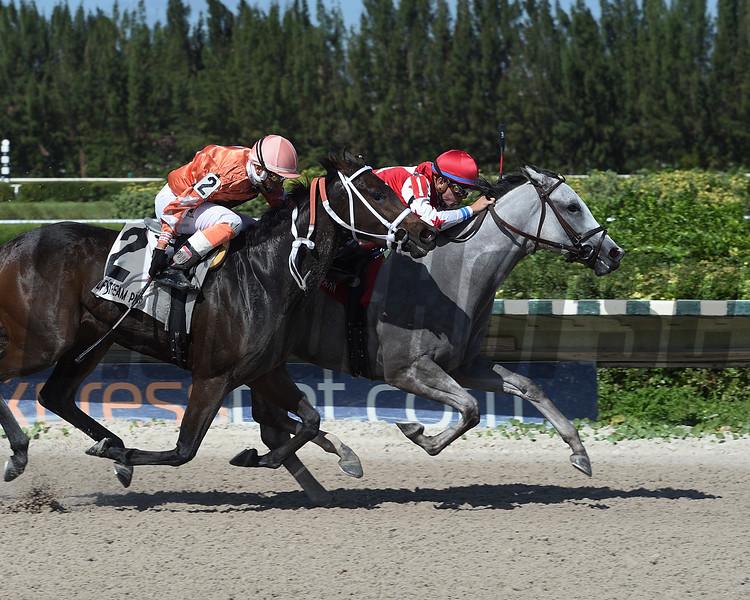 Silver Bay wins the 2017 Juvenile Fillies Sprint Stakes<br /> Coglianese Photos/Leslie Martin