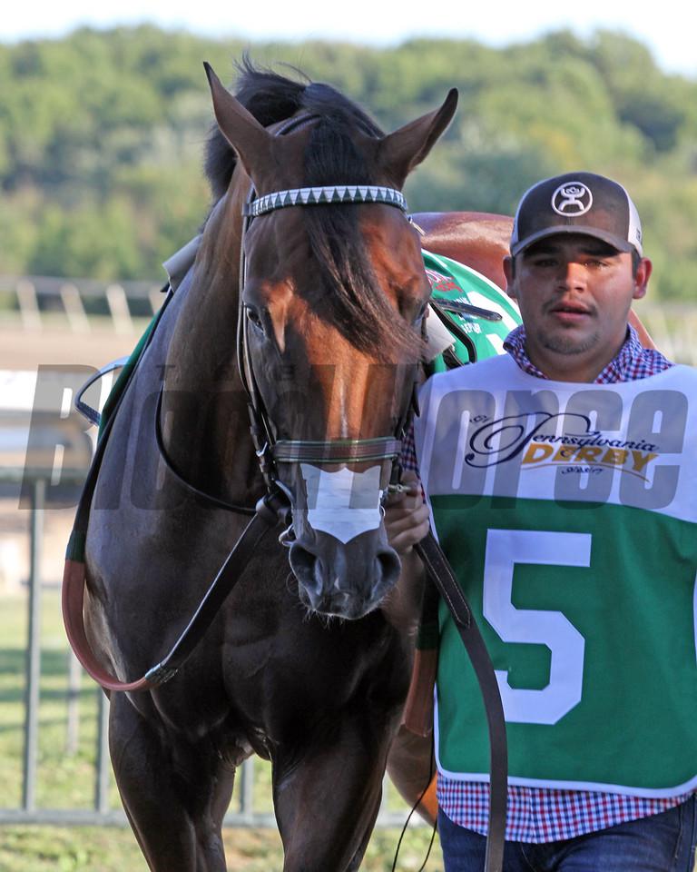 Irap Pennsylvania Derby Parx Chad B. Harmon