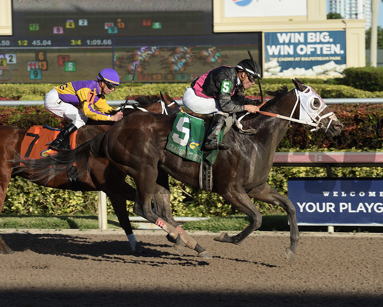 Cautious Giant wins the 2017 Claiming Crown Rapid Transit<br /> Coglianese Photos/Leslie Martin