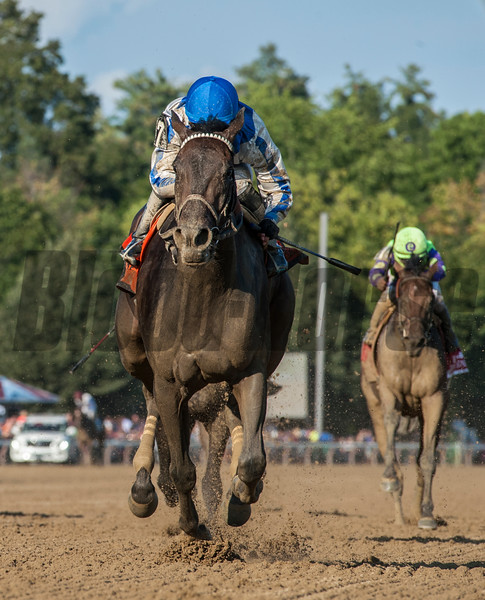 Elate with jockey Jose Ortiz left the field behind to win the 137th running of The Alabama Saturday Aug. 19, 2017 at the Saratoga Race Course in Saratoga Springs, N.Y.  (Skip Dickstein/