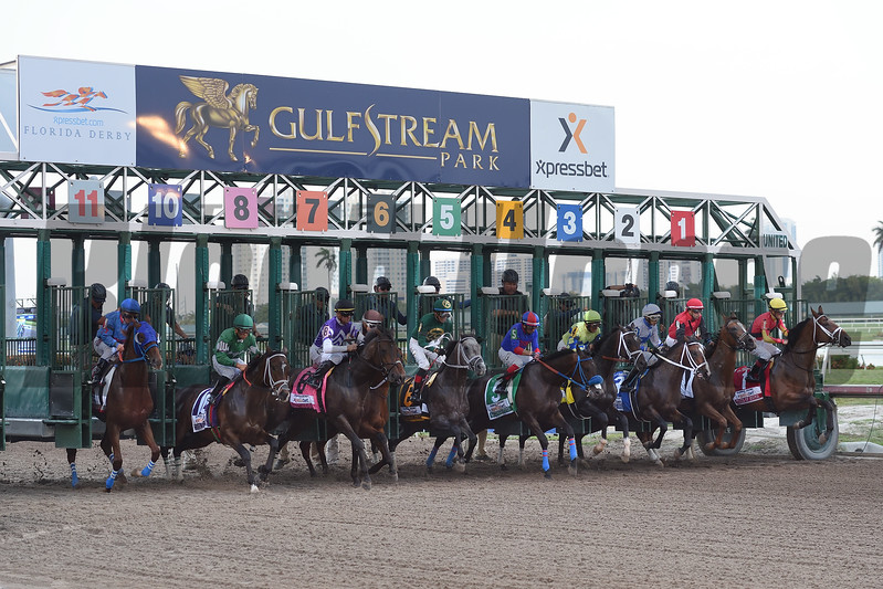 Starting gate of the Xpressbet Florida Derby (G1) at Gulfstream Park on April 1, 2017