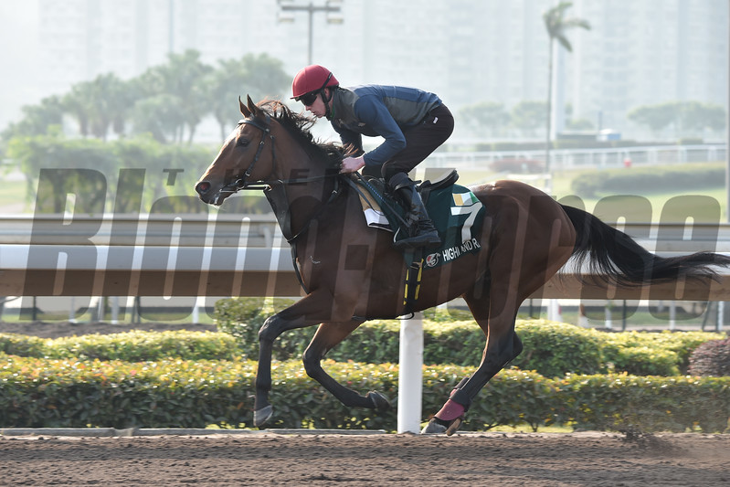 Highland Reel - Sha Tin Racecourse - December 9, 2017<br /> Katsumi Saito Photo