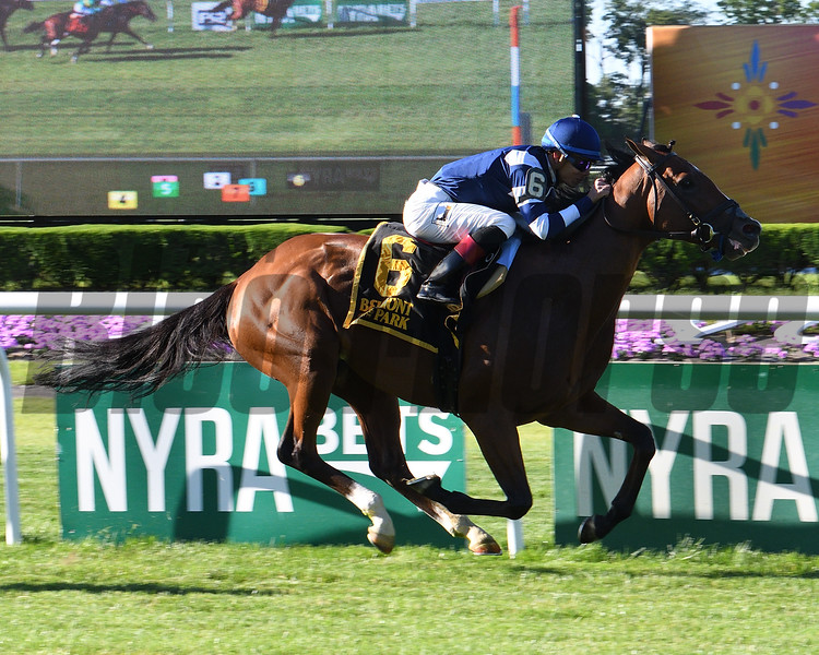Oscar Performance wins the 2017 Pennine Ridge Stakes<br /> Coglianese Photos/Viola Jasko