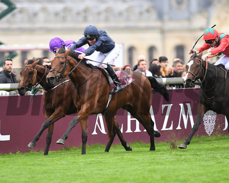 Rhododendron wins the 2017 Prix de l'Opera (G1), photo by Mathea Kelley