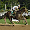 Good Samaritan wins the 2017 Jim Dandy<br /> Coglianese Photos/Ethan Coglianese