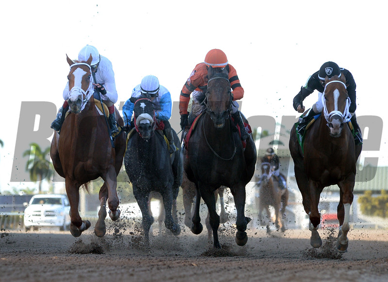 Distinta wins the 2017 Inside Information Stakes<br /> Coglianese Photos/Leslie Martin