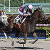Tequilita wins the 2017 Forward Gal<br /> Coglianese Photos