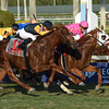 Taghleeb wins the 2017 W. L. McKnight Handicap<br /> Coglianese Photos/Susie Raisher