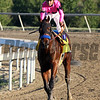 West Coast Mike Smith Pennsylvania Derby Parx Chad B. Harmon