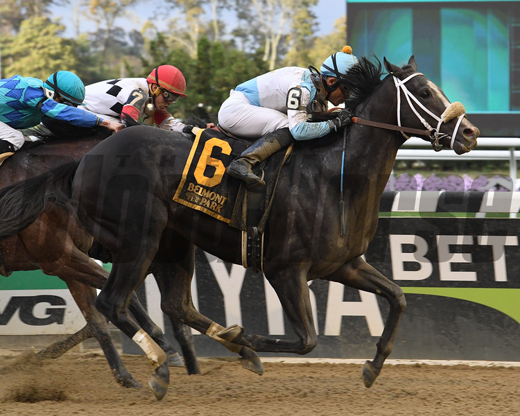 Tom's Ready wins the 2017 Bold Ruler<br /> Coglianese Photos/Robert Mauhar